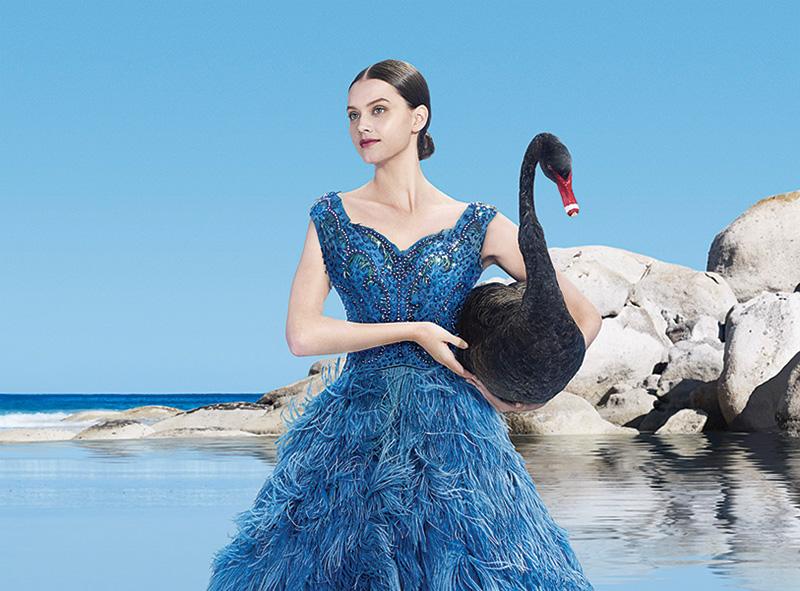 Formal dresses australia cheap travel