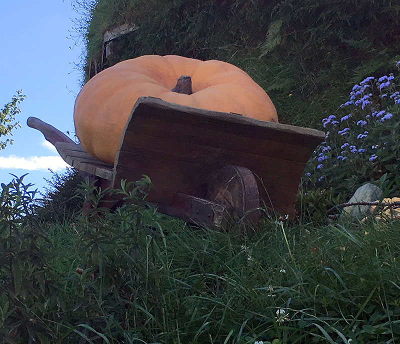 Fruit and vegetables, Hobbiton, New Zealand
