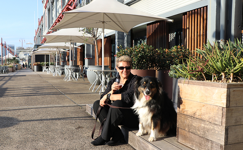 Pier one sydney harbour vacations travel magazine for Pet friendly hotels sydney