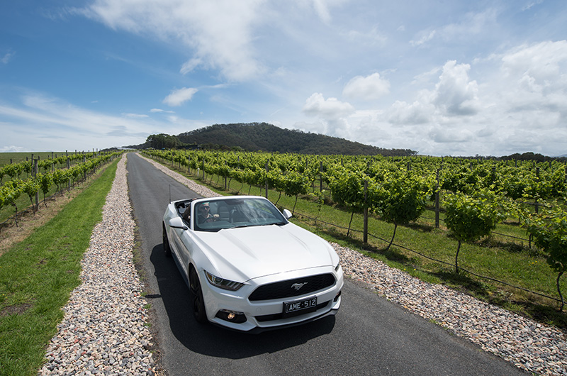 Grand Pacific Drive, road trips, Australia, TripAdvisor, Ford