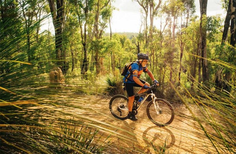 Munda Biddi Trail, Cycling, Australia