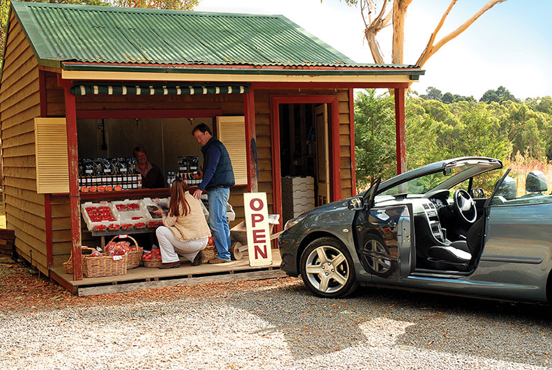 Road trips in Australia, Road tripping Australia's South Coast, Explore Sydneys Southern Highlands